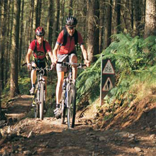 Mountain Biking at Contin